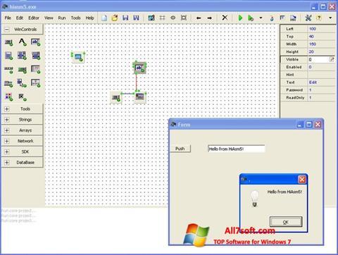 Screenshot HiAsm per Windows 7