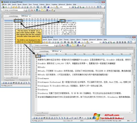 Screenshot UltraEdit per Windows 7