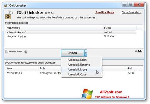 Screenshot IObit Unlocker per Windows 7