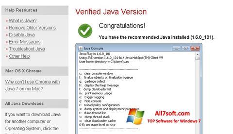 Screenshot Java per Windows 7
