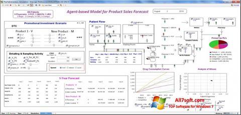 Screenshot AnyLogic per Windows 7